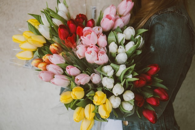 Woman with multiple tulip bouquets