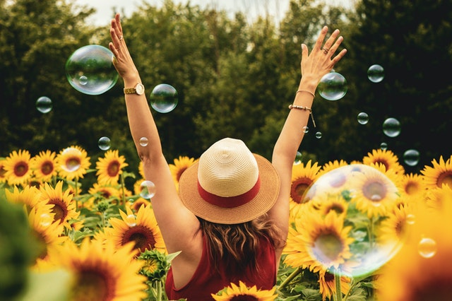 woman surrounded with sunflowers